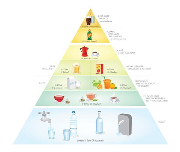 Piramide idratazione.